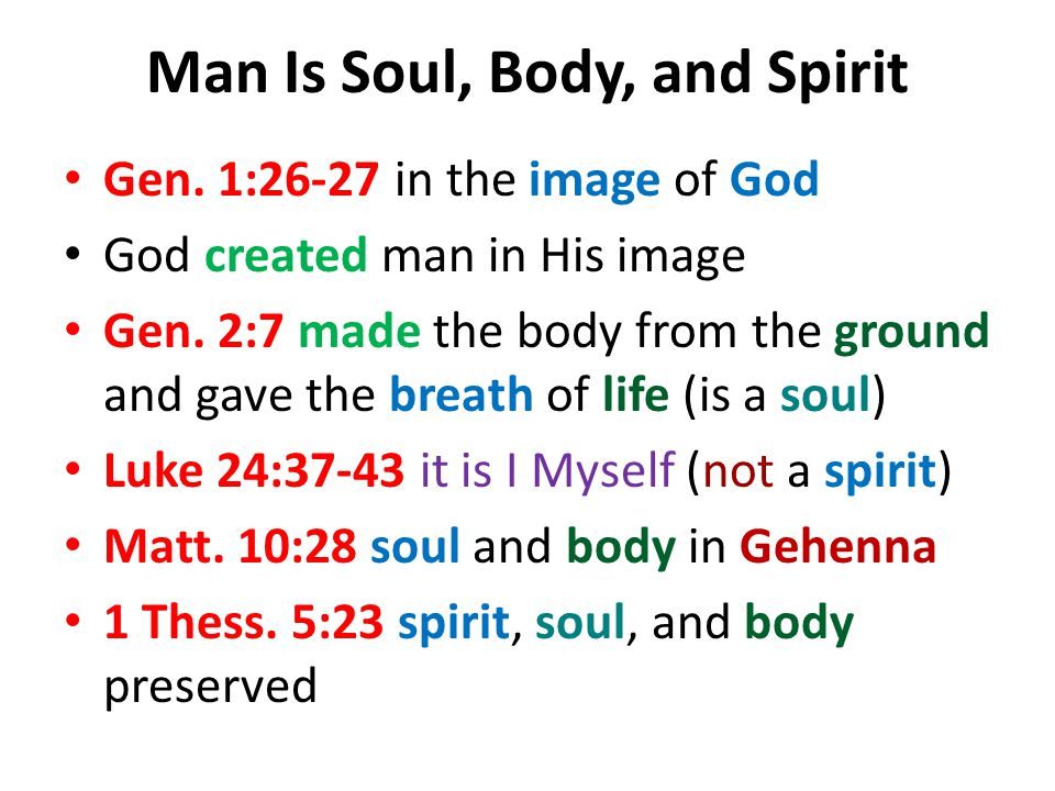 Man Is Soul, Body, and Spirit Gen. 1:26-27 in the image of God God created man in His image Gen.