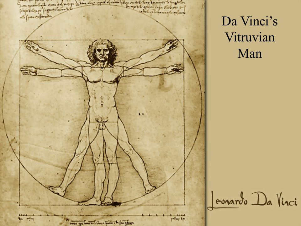 Da Vincis Vitruvian Man