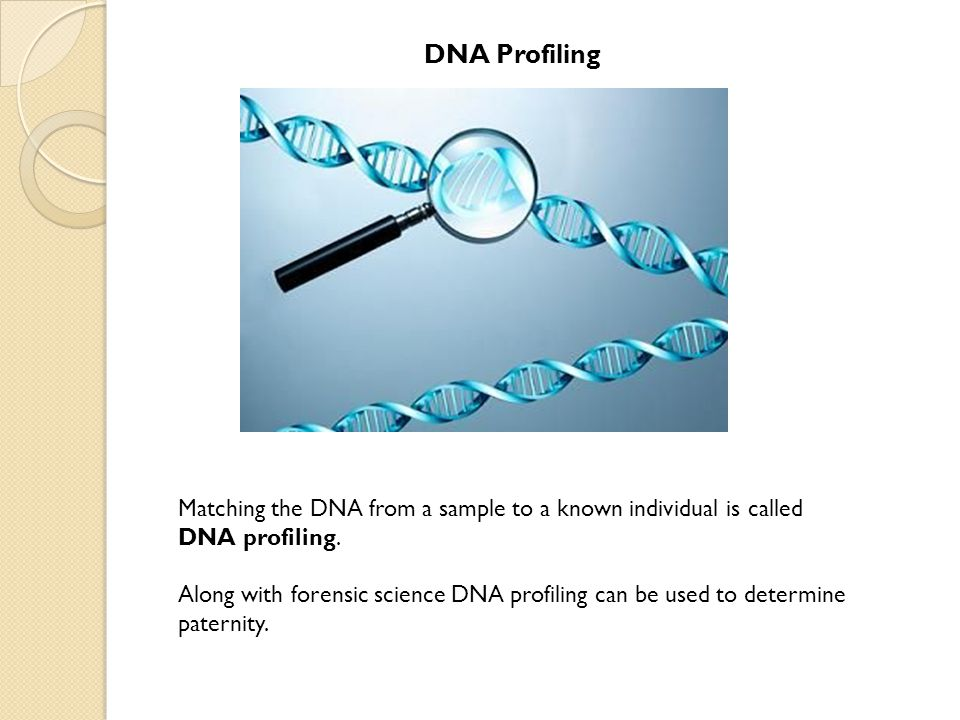 DNA Profiling Matching the DNA from a sample to a known individual is called DNA profiling. Along with forensic science DNA profiling can be used to d