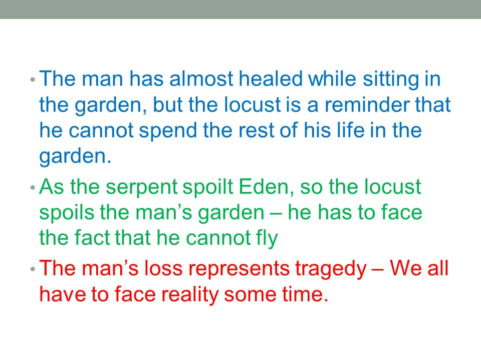 The man has almost healed while sitting in the garden, but the locust is a reminder that he cannot spend the rest of his life in the garden. As the se