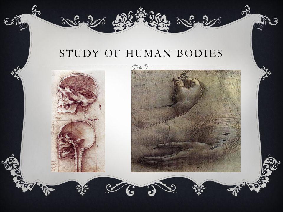 STUDY OF HUMAN BODIES