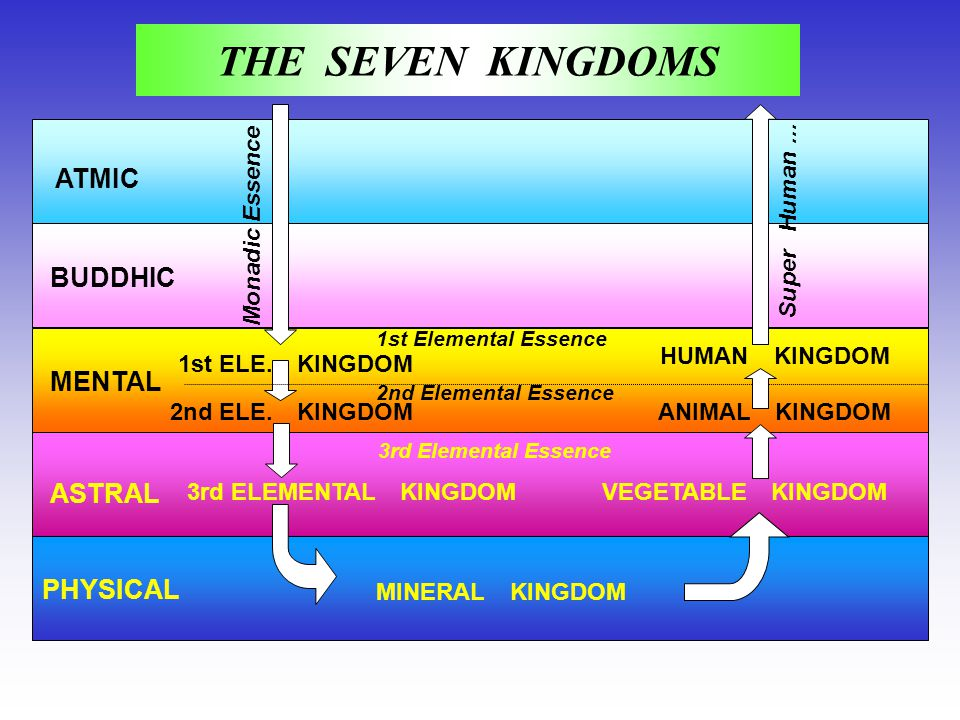 ATMIC BUDDHIC MENTAL ASTRAL PHYSICAL 1st ELE. KINGDOM 2nd ELE. KINGDOM 3rd ELEMENTAL KINGDOM MINERAL KINGDOM VEGETABLE KINGDOM 1st Elemental Essence 2