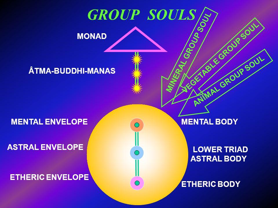 GROUP SOULS MONAD ÂTMA-BUDDHI-MANAS LOWER TRIAD MENTAL ENVELOPE ASTRAL ENVELOPE ETHERIC ENVELOPE ETHERIC BODY ASTRAL BODY MENTAL BODY MINERAL GROUP SO
