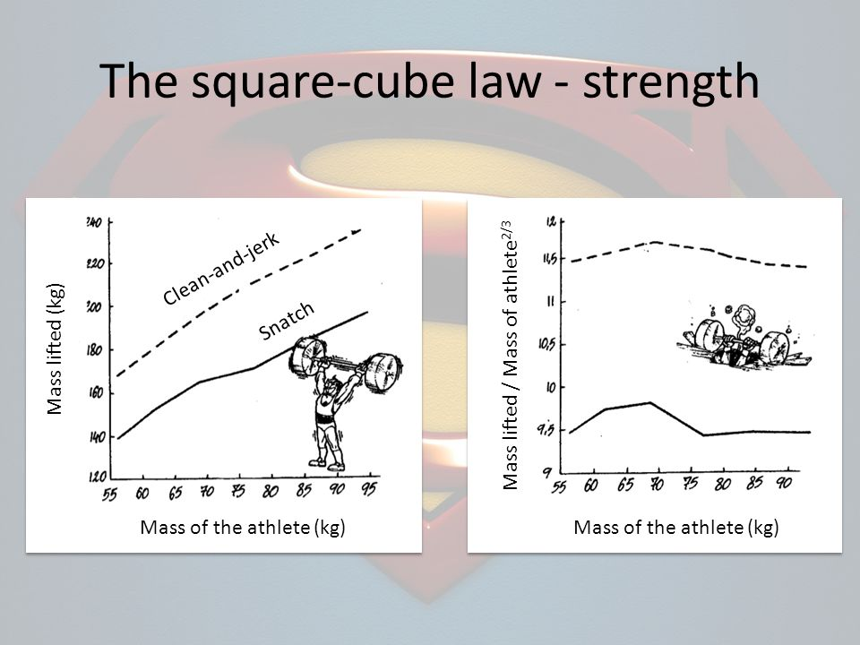 The square-cube law - strength Mass of the athlete (kg) Mass lifted / Mass of athlete 2/3 Mass of the athlete (kg) Mass lifted (kg) Clean-and-jerk Sna