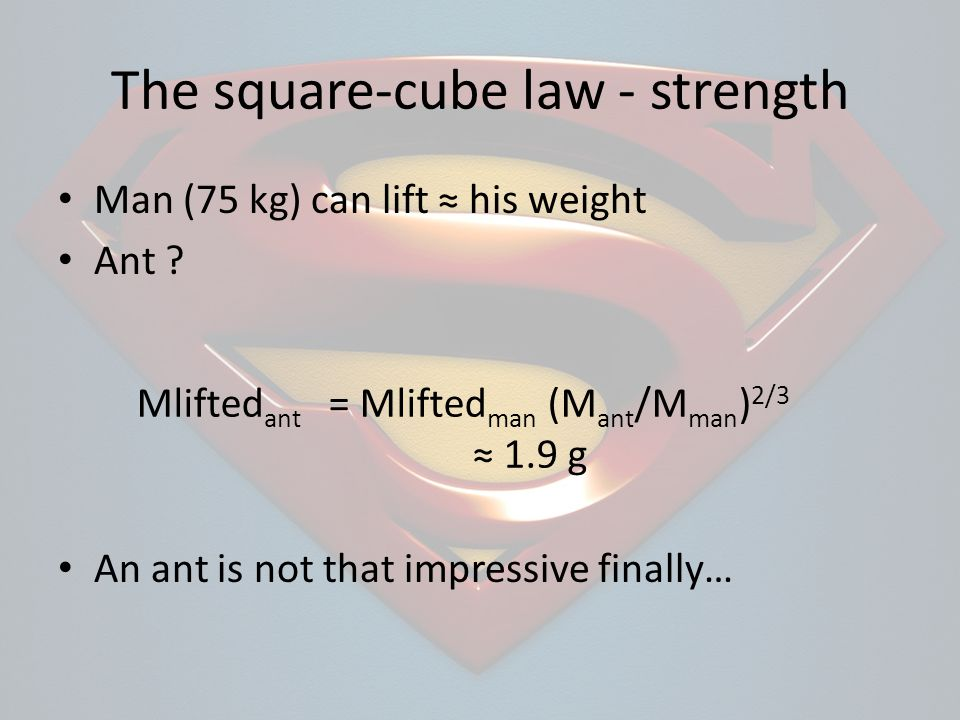 The square-cube law - strength Man (75 kg) can lift his weight Ant ? An ant is not that impressive finally… Mlifted ant = Mlifted man (M ant /M man )