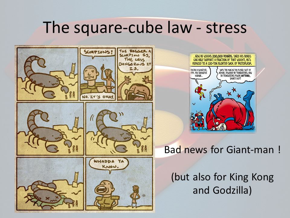 Bad news for Giant-man ! (but also for King Kong and Godzilla)