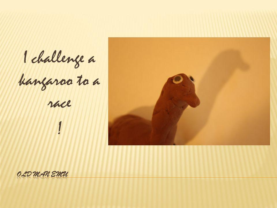 I challenge a kangaroo to a race !