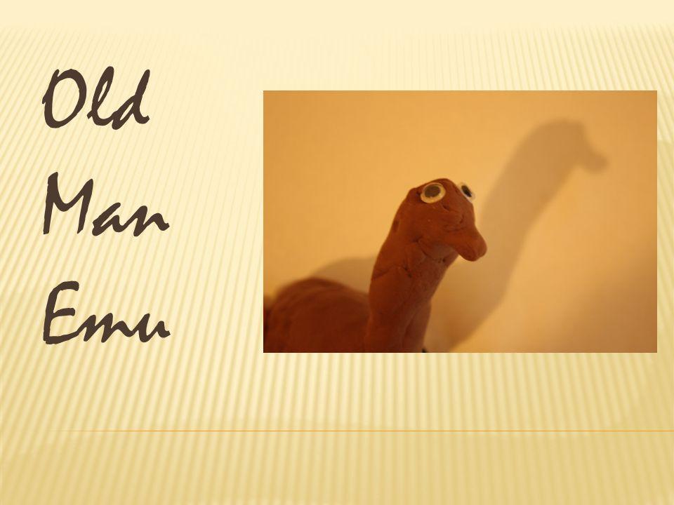 Fred Mr. Kangaroo Old Man Emu 3 %7 % 90 %