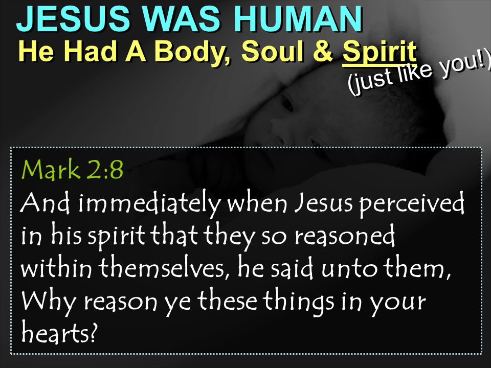 JESUS WAS HUMAN He Had A Body, Soul & Spirit Mark 2:8 And immediately when Jesus perceived in his spirit that they so reasoned within themselves, he said unto them, Why reason ye these things in your hearts.