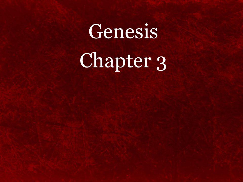 Genesis Chapter 3