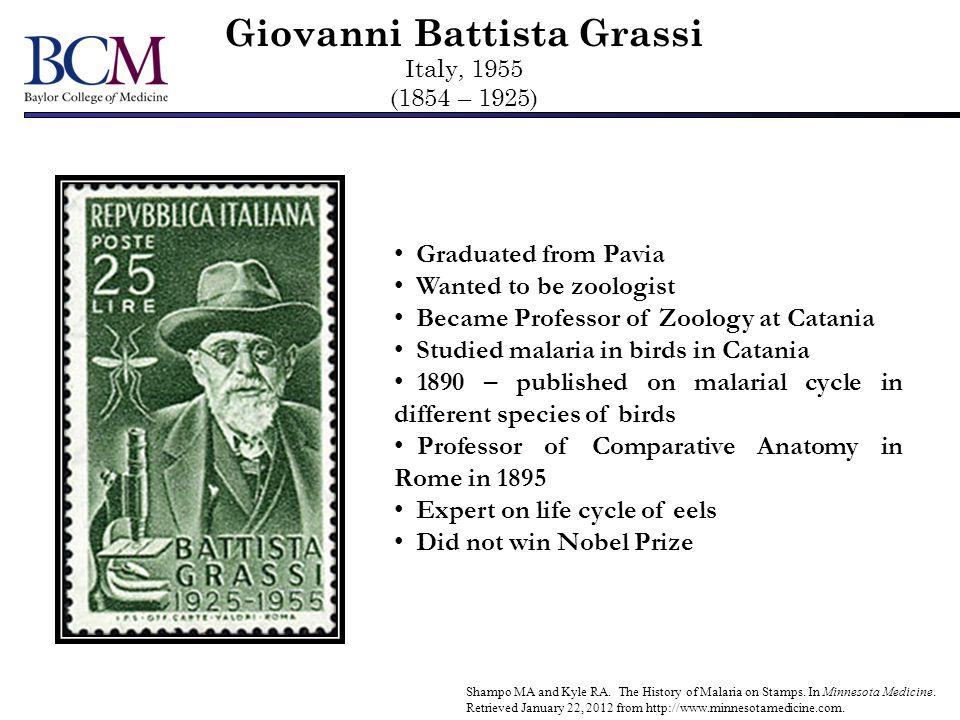 Giovanni Battista Grassi Italy, 1955 (1854 – 1925) Shampo MA and Kyle RA. The History of Malaria on Stamps. In Minnesota Medicine. Retrieved January 2