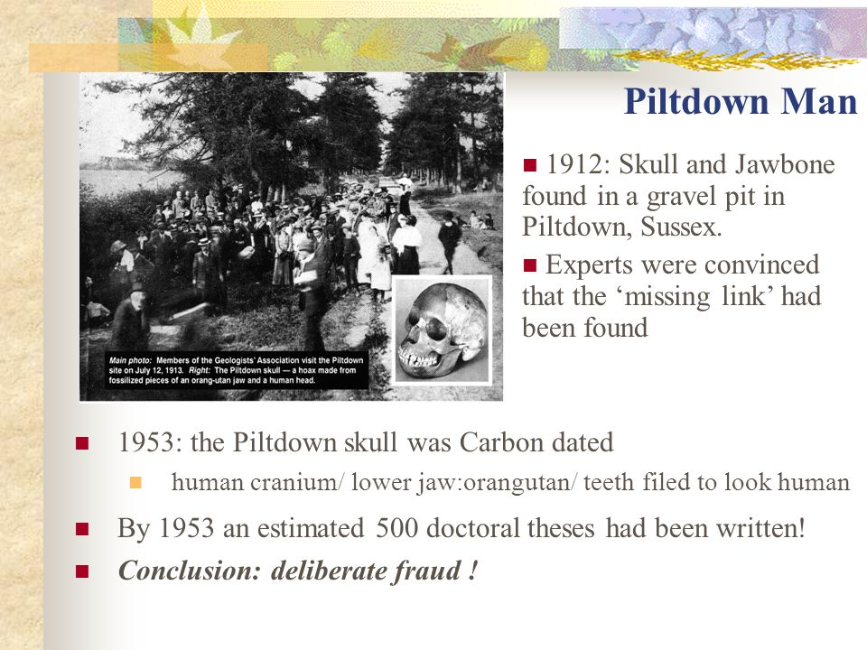Piltdown Man 1953: the Piltdown skull was Carbon dated human cranium/ lower jaw:orangutan/ teeth filed to look human By 1953 an estimated 500 doctoral theses had been written.