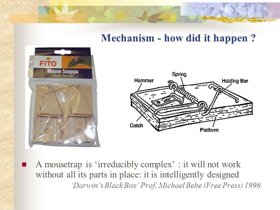 Mechanism - how did it happen .