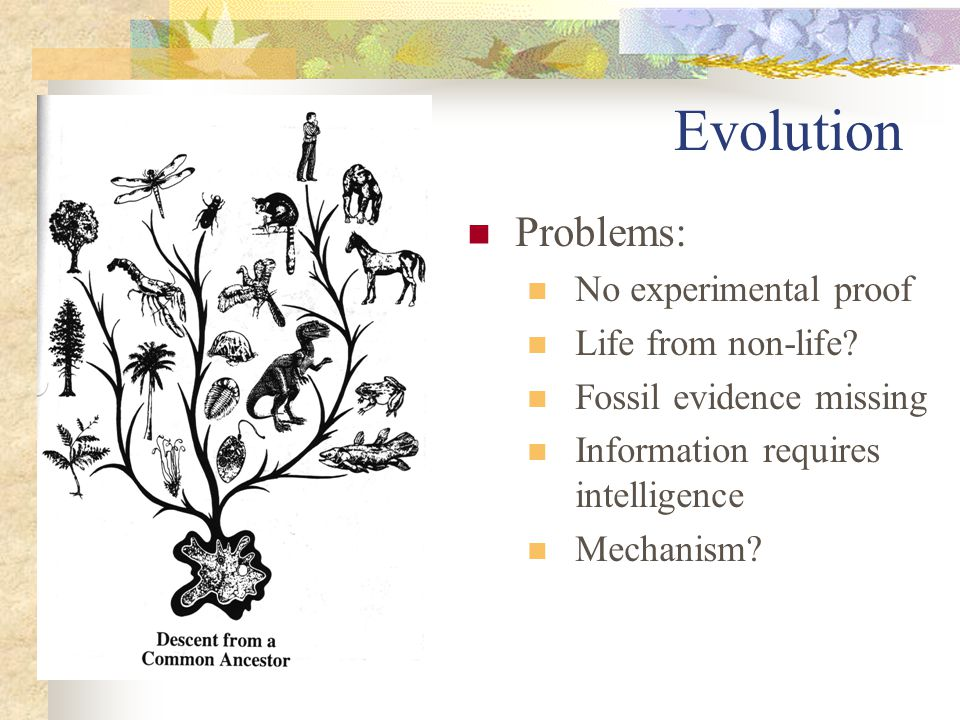 Evolution Problems: No experimental proof Life from non-life.