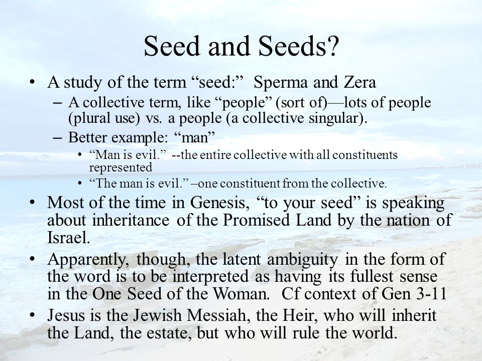 Seed and Seeds.