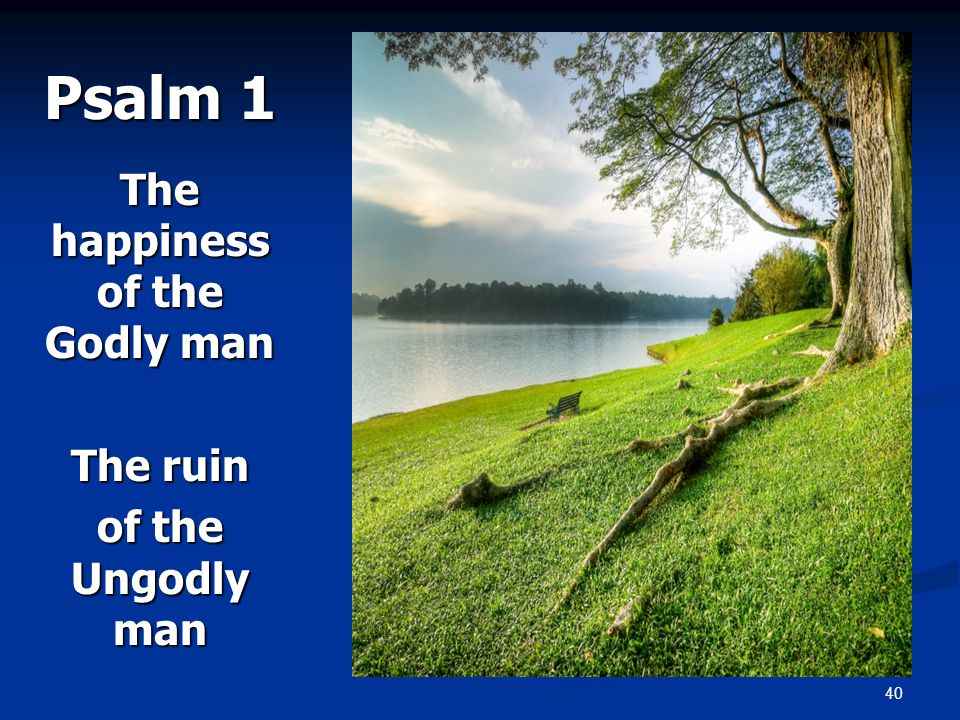 40 Psalm 1 The happiness of the Godly man The ruin of the Ungodly man