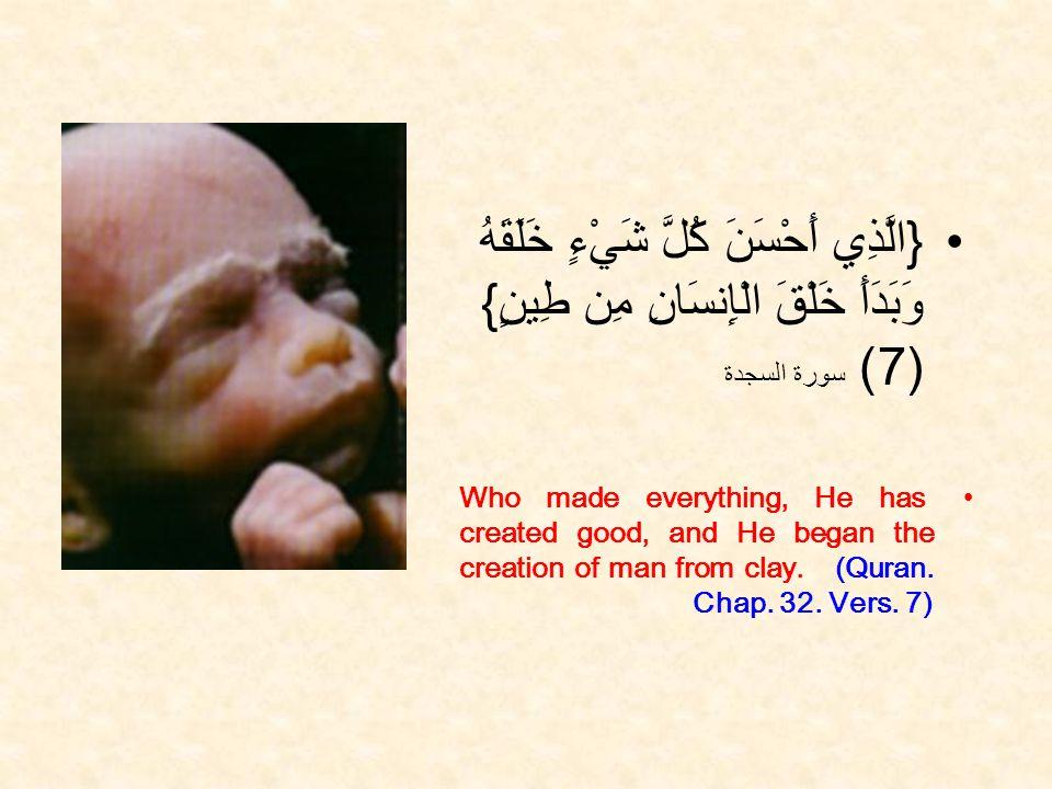 { الَّذِي أَحْسَنَ كُلَّ شَيْءٍ خَلَقَهُ وَبَدَأَ خَلْقَ الْإِنسَانِ مِن طِينٍ } (7) سورة السجدة Who made everything, He has created good, and He began the creation of man from clay.
