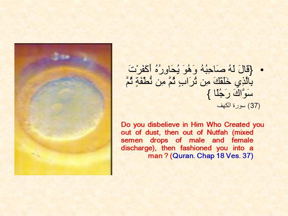 { قَالَ لَهُ صَاحِبُهُ وَهُوَ يُحَاوِرُهُ أَكَفَرْتَ بِالَّذِي خَلَقَكَ مِن تُرَابٍ ثُمَّ مِن نُّطْفَةٍ ثُمَّ سَوَّاكَ رَجُلًا } (37 ) سورة الكهف Do you disbelieve in Him Who Created you out of dust, then out of Nutfah (mixed semen drops of male and female discharge), then fashioned you into a man .