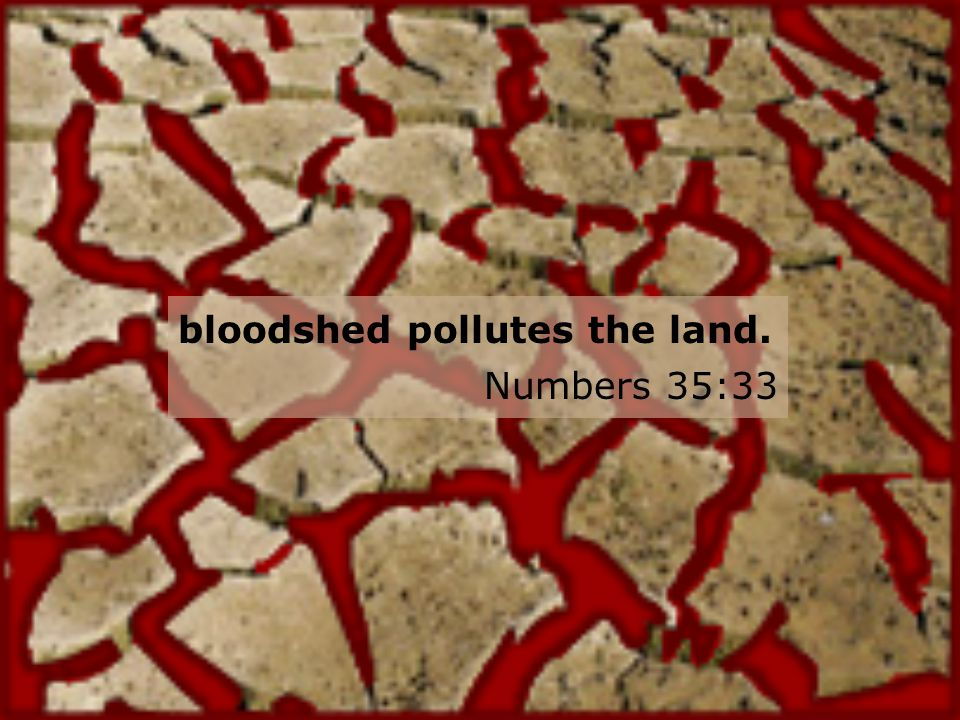 bloodshed pollutes the land. Numbers 35:33