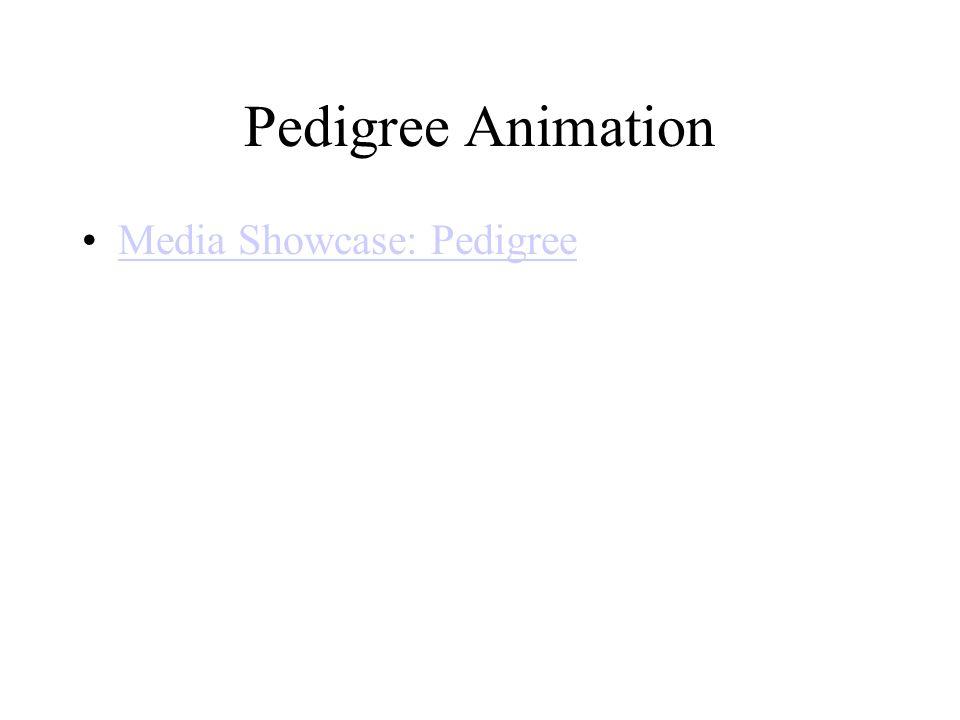 Pedigree Animation Media Showcase: Pedigree