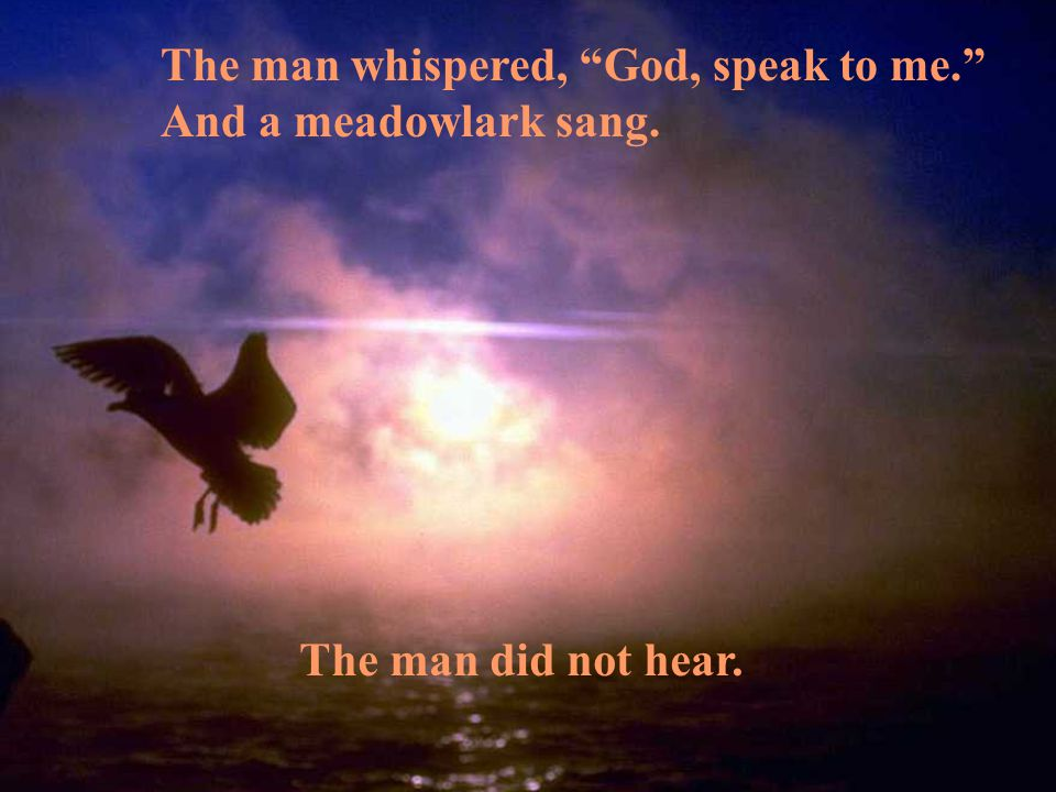 The man whispered, God, speak to me. And a meadowlark sang. The man did not hear.