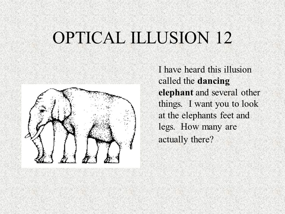 OPTICAL ILLUSION 12 I have heard this illusion called the dancing elephant and several other things. I want you to look at the elephants feet and legs