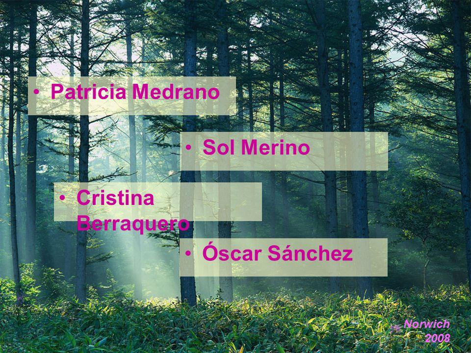 Patricia Medrano Cristina Berraquero Óscar Sánchez Norwich 2008 Sol Merino