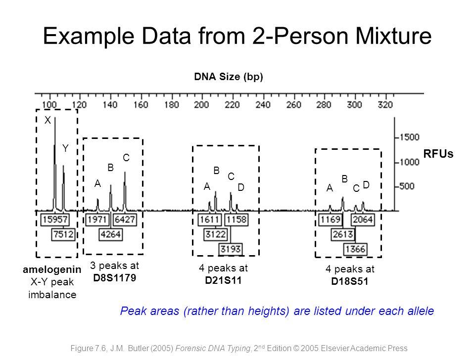 amelogenin X-Y peak imbalance A B C B A C D D C B A 3 peaks at D8S1179 4 peaks at D21S11 4 peaks at D18S51 X Y DNA Size (bp) RFUs Figure 7.6, J.M. But