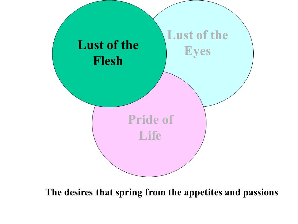 Lust of the Flesh Lust of the Eyes Pride of Life The desires that spring from the appetites and passions
