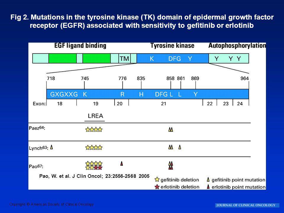 Pao, W. et al. J Clin Oncol; 23:2556-2568 2005 Fig 2. Mutations in the tyrosine kinase (TK) domain of epidermal growth factor receptor (EGFR) associat