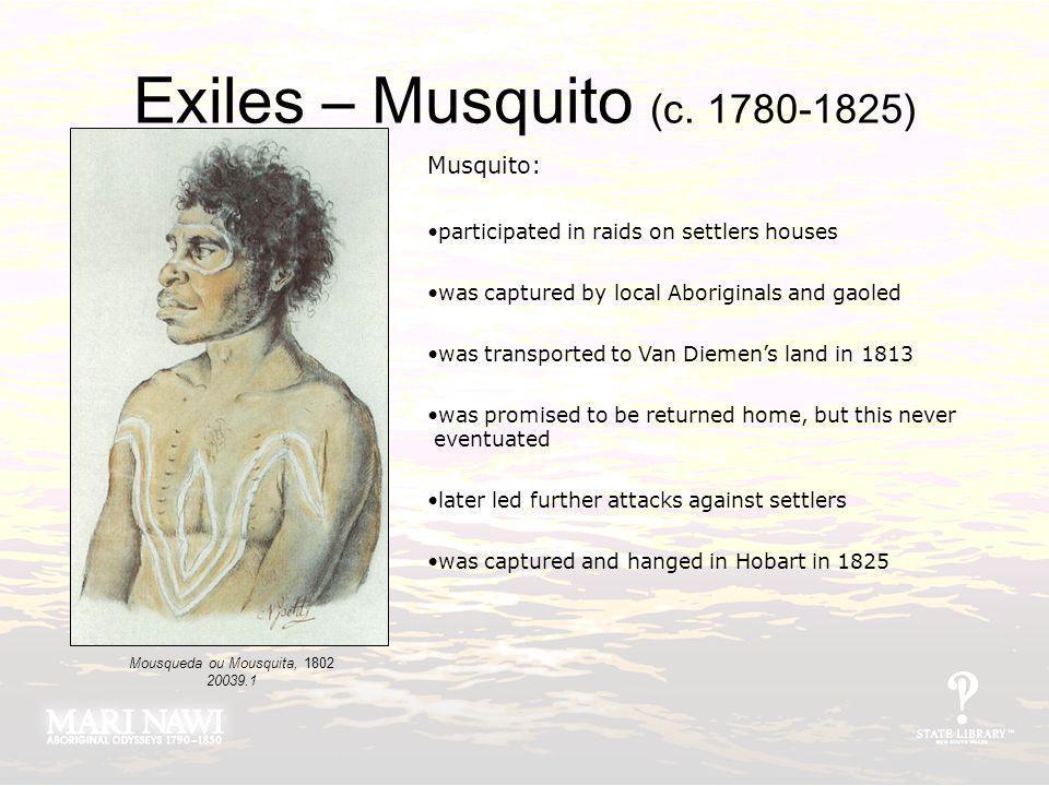 Exiles – Musquito (c. 1780-1825) Mousqueda ou Mousquita, 1802 20039.1 Musquito: participated in raids on settlers houses was captured by local Aborigi