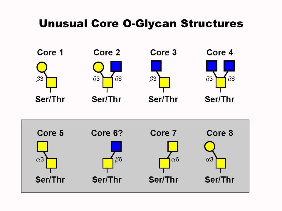 Core 3 Ser/Thr 3 Core 4 Ser/Thr 3 6 3 Core 1 Ser/Thr 3 6 Core 2 Core 7 Ser/Thr 6 Core 6? Ser/Thr 6 Core 5 Ser/Thr 3 Core 8 Ser/Thr 3 Unusual Core O-Gl