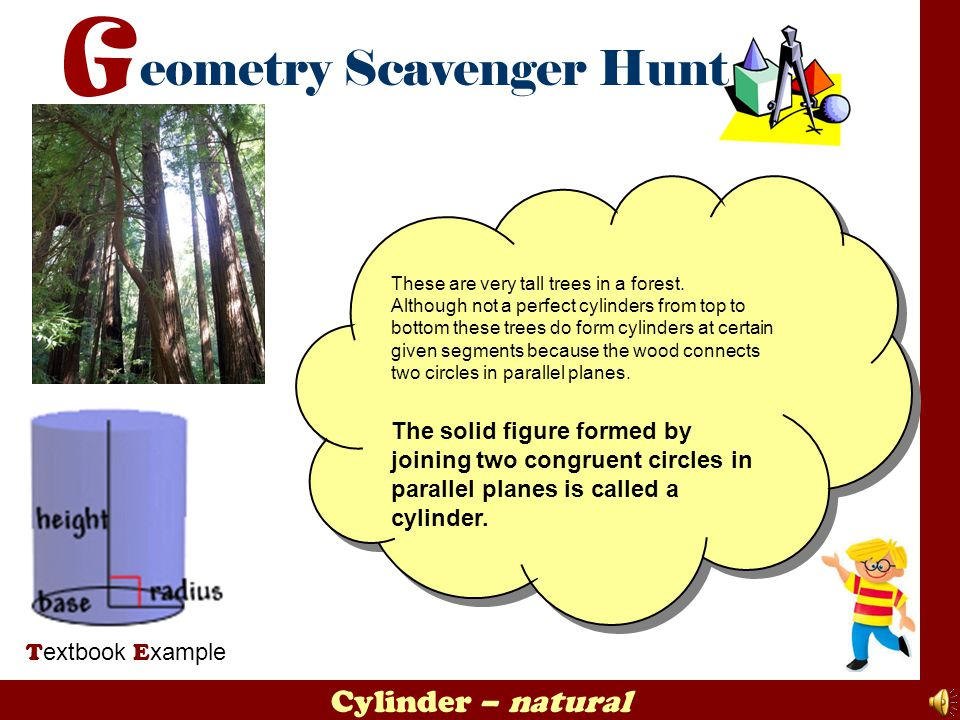 Cylinder – natural T extbook E xample These are very tall trees in a forest. Although not a perfect cylinders from top to bottom these trees do form c