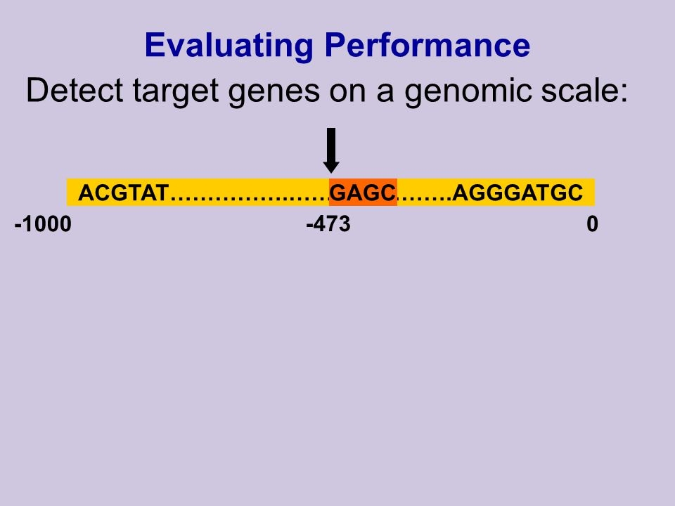 Evaluating Performance Detect target genes on a genomic scale: ACGTAT…………….………………….AGGGATGCGAGC -10000 -473