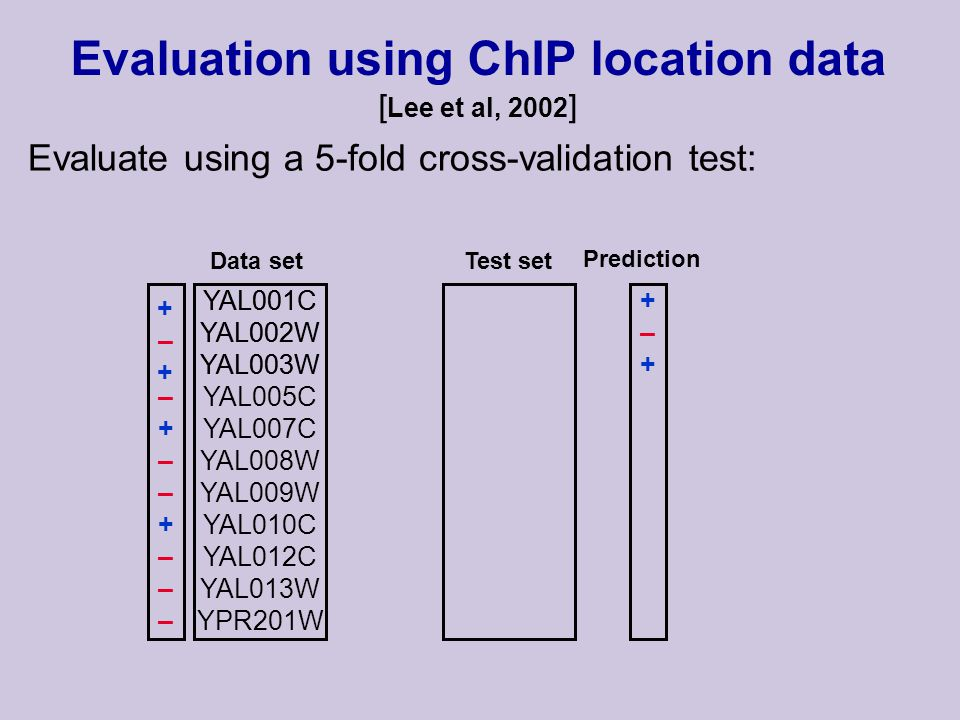YAL005C YAL007C YAL008W YAL009W YAL010C YAL012C YAL013W YPR201W Evaluation using ChIP location data [ Lee et al, 2002 ] Evaluate using a 5-fold cross-validation test: +–++–+ YAL001C YAL002W YAL003W Data setTest set Prediction –+––+––––+––+––– YAL001C YAL002W YAL003W +–++–+