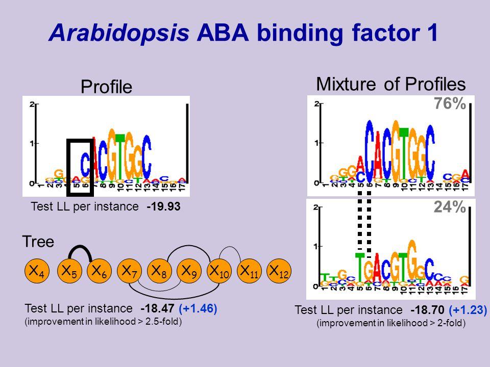 Arabidopsis ABA binding factor 1 Profile Test LL per instance -19.93 Mixture of Profiles 76% 24% Test LL per instance -18.70 (+1.23) (improvement in likelihood > 2-fold) X4X4 X5X5 X6X6 X7X7 X8X8 X9X9 X 10 X 11 X 12 Tree Test LL per instance -18.47 (+1.46) (improvement in likelihood > 2.5-fold)