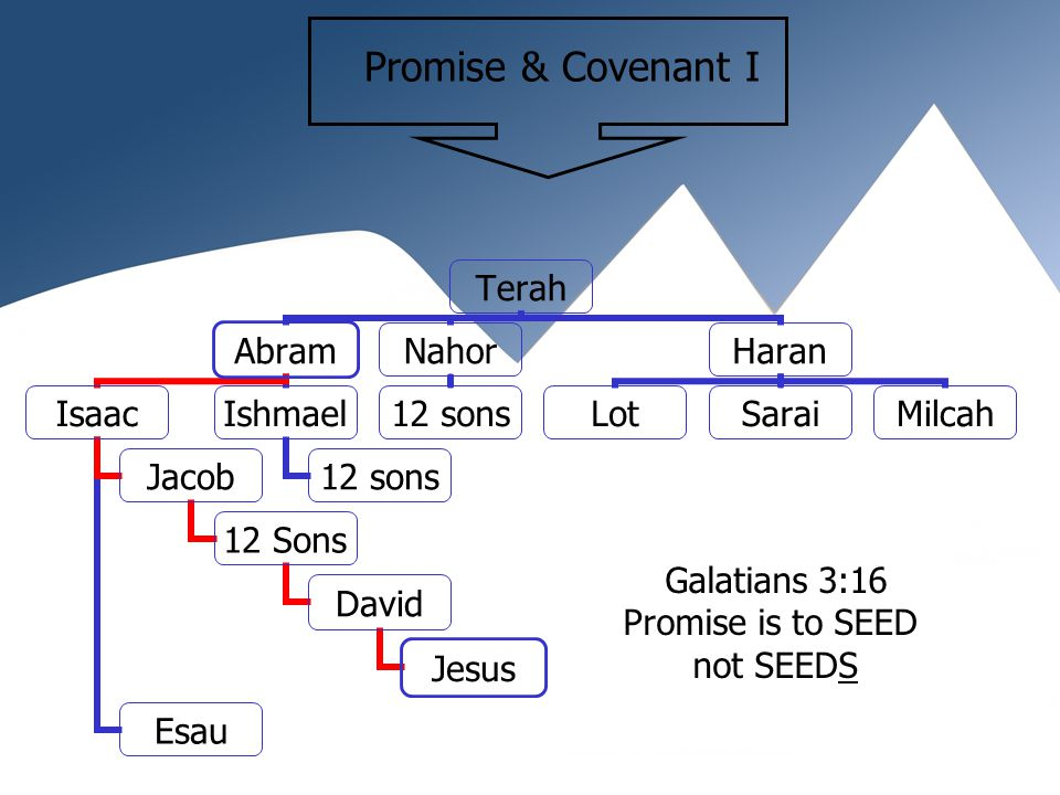 Abraham-Isaac-Jacob Circumcision as a sign of the covenant Genesis 17:10 Have a male child, Land promise to Israel Many Nations come from Abraham To Abraham and his Seed Promise that all would be blessed Genesis 22:18, Galatians 3:16