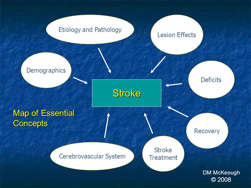 Stroke Recovery Etiology and Pathology Deficits Lesion Effects Demographics Stroke Treatment Map of Essential Concepts DM McKeough © 2008 Cerebrovascular System