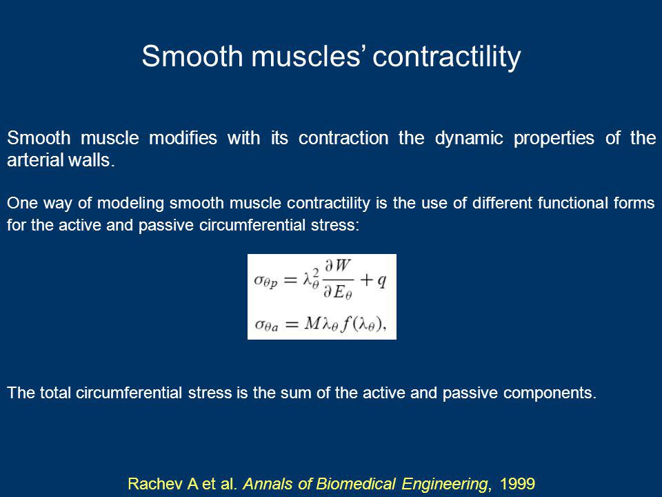 Smooth muscles contractility Smooth muscle modifies with its contraction the dynamic properties of the arterial walls.