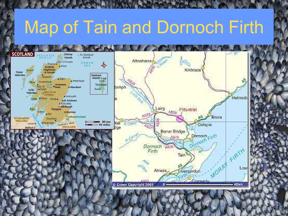 Map of Tain and Dornoch Firth