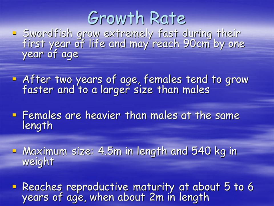 Growth Rate Swordfish grow extremely fast during their first year of life and may reach 90cm by one year of age Swordfish grow extremely fast during t