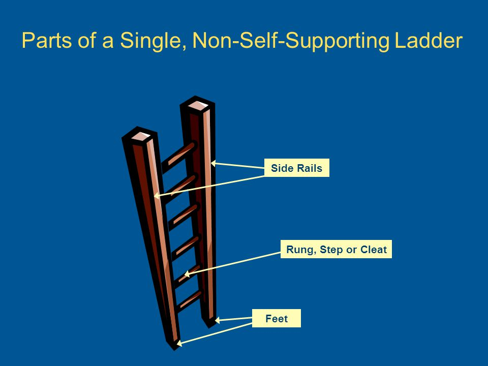 Side Rails Parts of a Single, Non-Self-Supporting Ladder Rung, Step or Cleat Feet