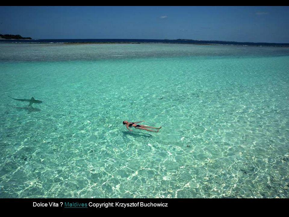 Philippines, Stare,, Copyright: Alec Tempongko 57