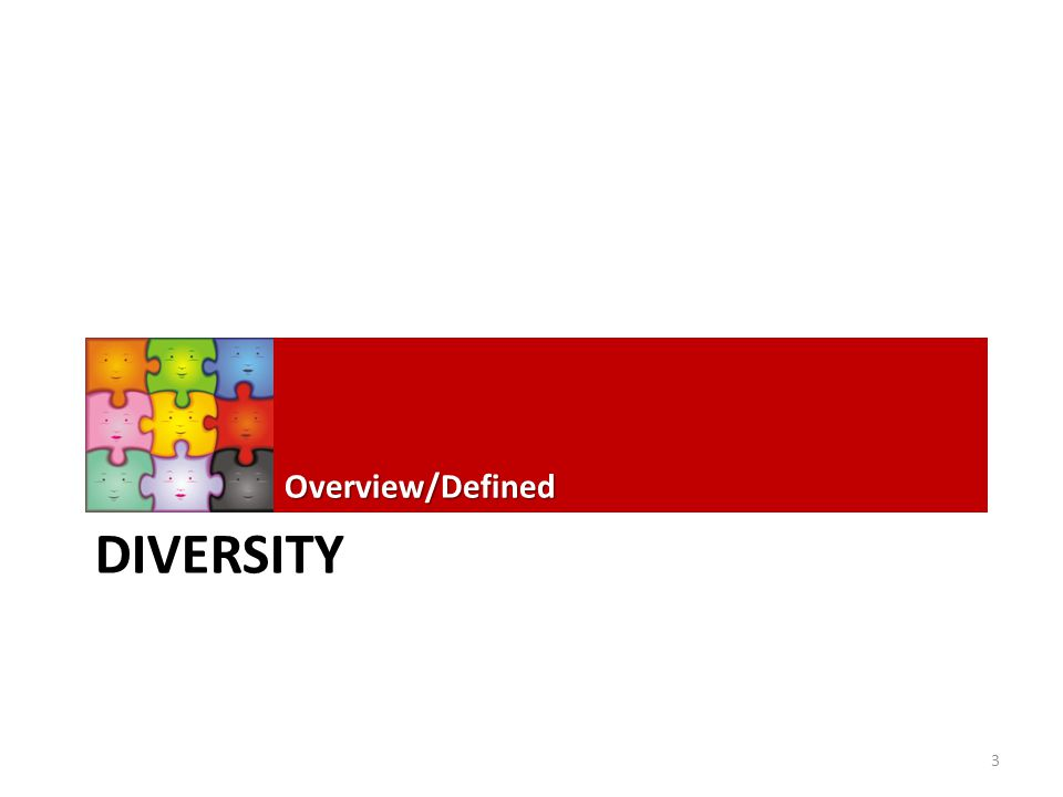 DIVERSITY Overview/Defined 3
