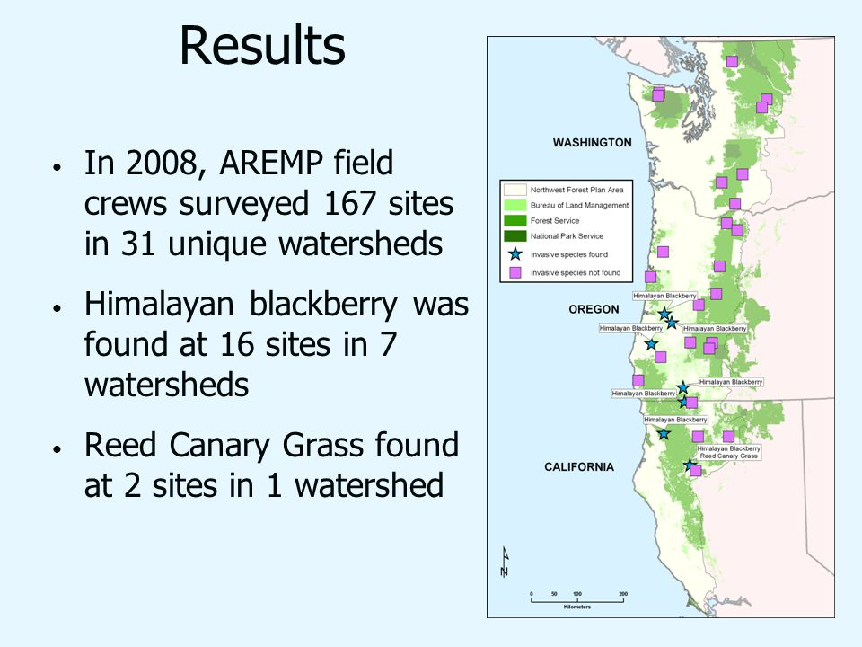Results In 2008, AREMP field crews surveyed 167 sites in 31 unique watersheds Himalayan blackberry was found at 16 sites in 7 watersheds Reed Canary Grass found at 2 sites in 1 watershed