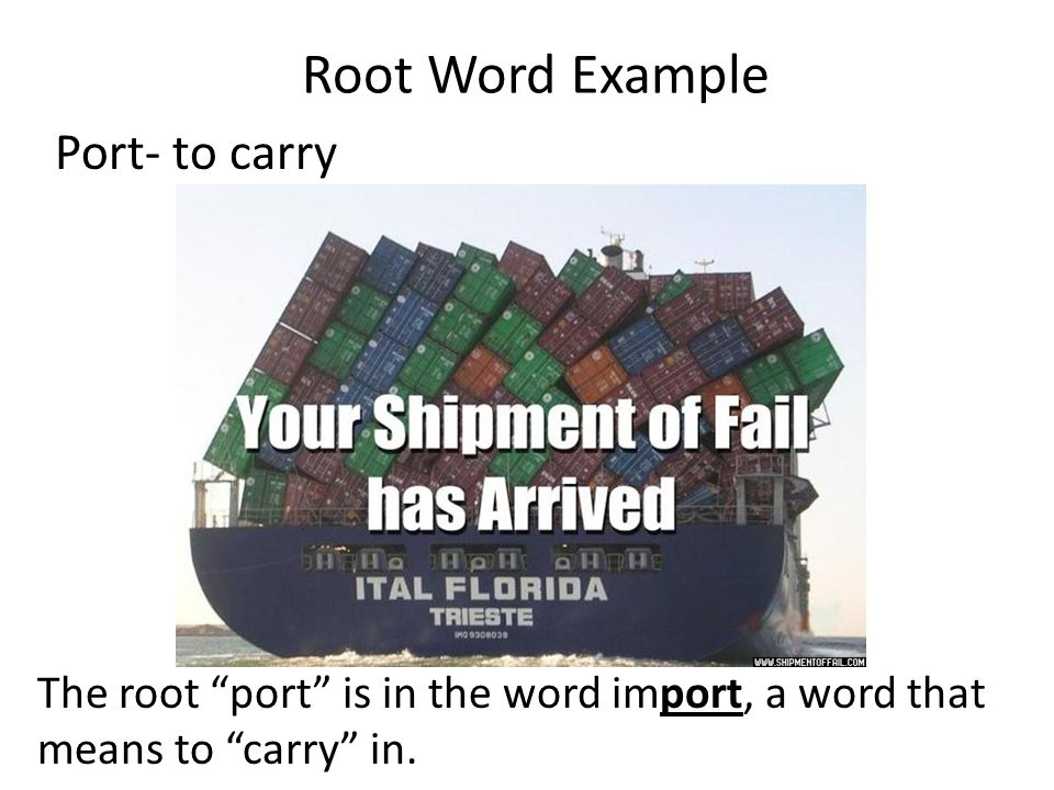 Root Word Example Port- to carry The root port is in the word import, a word that means to carry in.