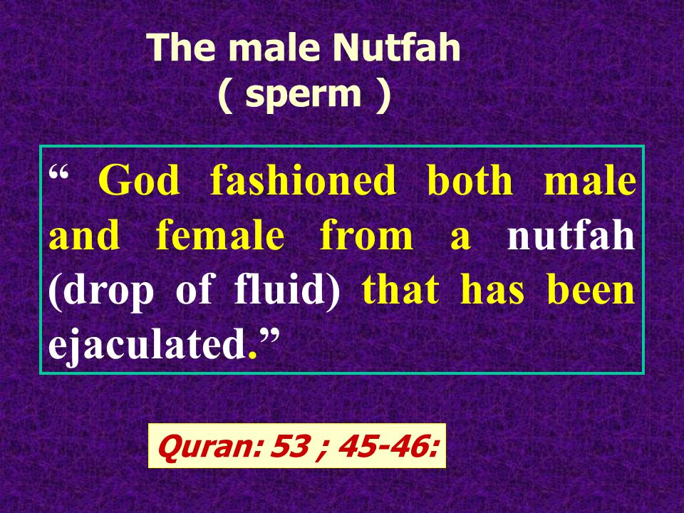 God fashioned both male and female from a nutfah (drop of fluid) that has been ejaculated.
