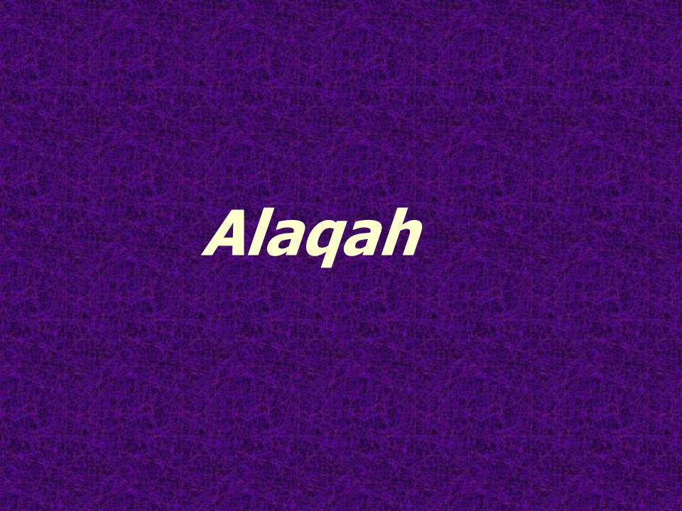 Alaqah