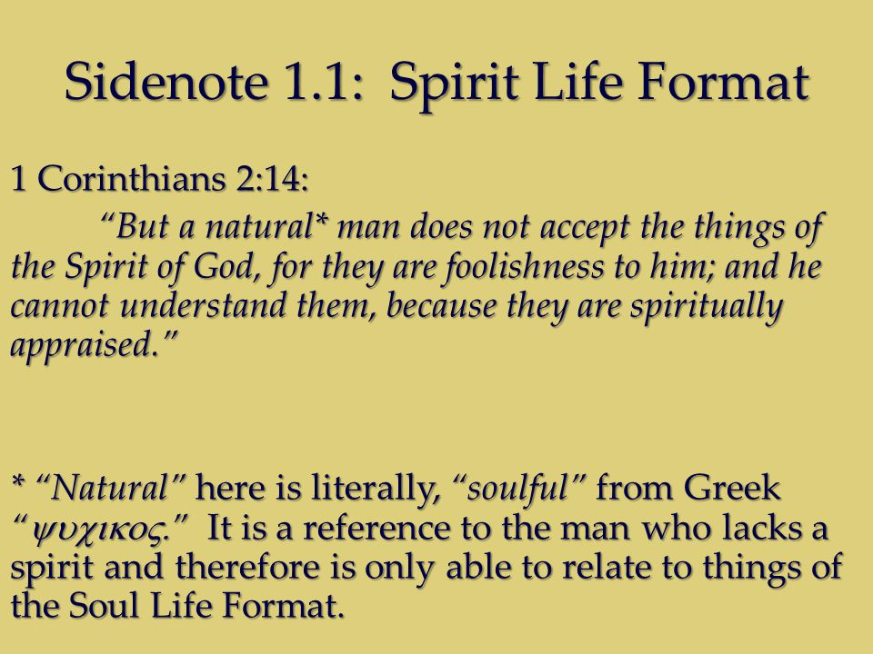 Sidenote 1.1: Spirit Life Format 1 Corinthians 2:14: But a natural* man does not accept the things of the Spirit of God, for they are foolishness to him; and he cannot understand them, because they are spiritually appraised.
