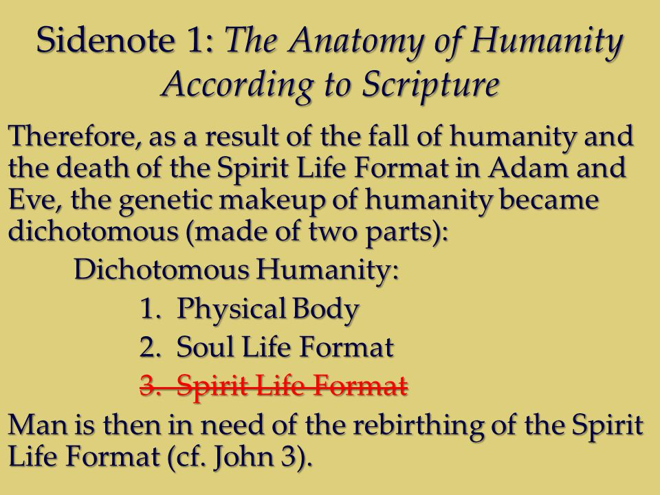 Sidenote 1: The Anatomy of Humanity According to Scripture Therefore, as a result of the fall of humanity and the death of the Spirit Life Format in Adam and Eve, the genetic makeup of humanity became dichotomous (made of two parts): Dichotomous Humanity: 1.